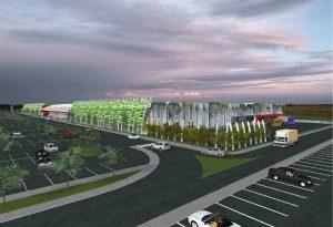 Polemiche sul nuovo centro commerciale a Due Carrare: Deda risponde con incredulità e richiede un accesso atti