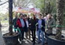 Il Naviglio 2020 a Padova non ci sarà e Federico Contin lascia l'associazione dei baristi