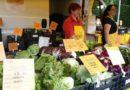 Il primo mercato coperto di profotti genuini delle aziende di Campagna amica Padova apre sabato in via Vicenza