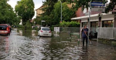 A Padova fortissimo temporale, alberi caduti e problemi al traffico