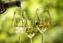 I vini Sauternes: una superba dolce stravaganza