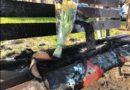 Quel fuoco sotto la panchina di Verona: non è morto solo Boateng Kofie in quel giardinetto, ma anche una parte della nostra umanità